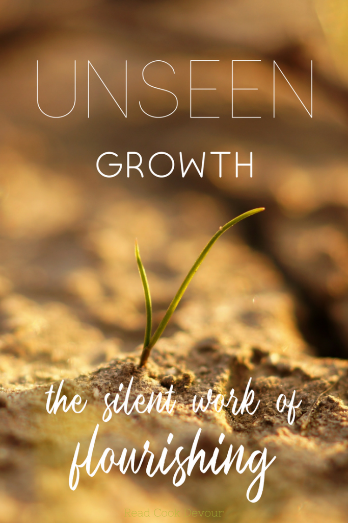 Unseen Growth| The Silent Work of Flourishing | Guest Post from Angela Sackett of Everyday Welcome | Slowness | Spiritual Fruit | Slowing Down | Growth | #quiet #slow #sabbath