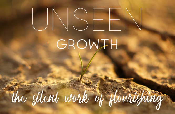 Unseen Growth | The Silent Work of Flourishing