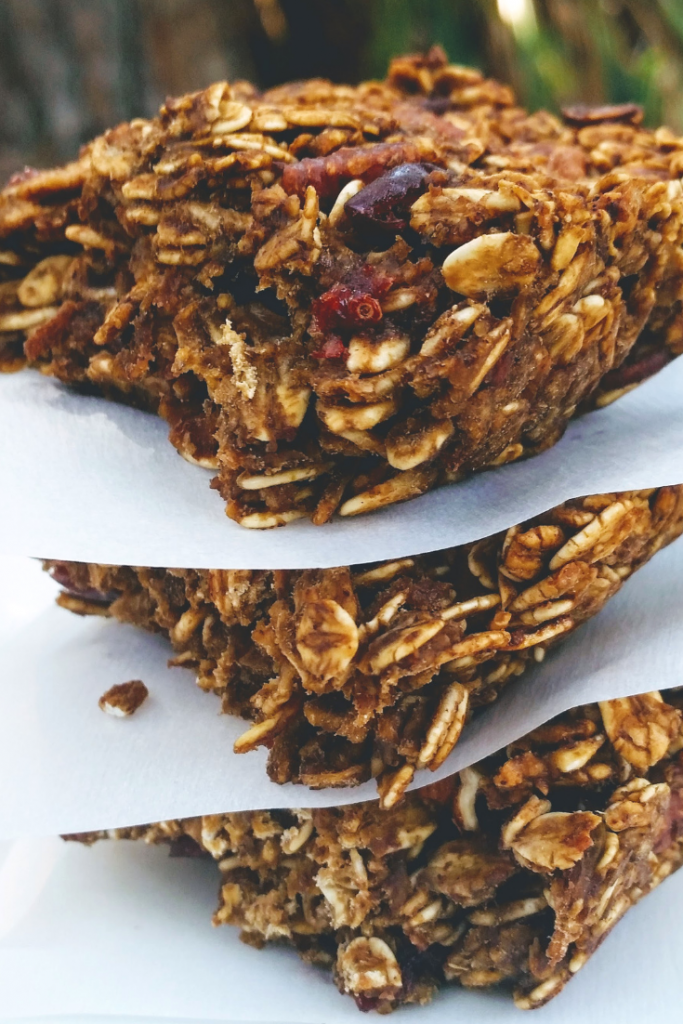 Gingerbread Granola Bars | Breakfast | Healthy Snack | Holiday | Cranberries | Vegan | Gluten Free