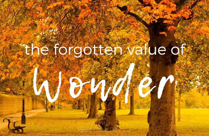 The Forgotten Value of Wonder | Creation | Worship | God the Creator |