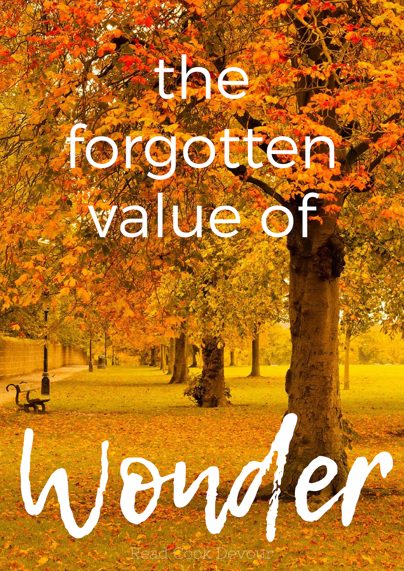 The Forgotten Value of Wonder | Nature | Creation | God the Creator | Worship